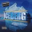 ITZ TIP OF THE ICEBERG