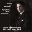 Symphony No.6 : Walter / Columbia Symphony Orchestra -Transfers & Production: Naoya Hirabayashi, Open Reel 2 track 38 cm