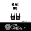 ���b�V���o�b�O: Kai (88)/ Exo