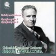 Symphonies Nos.1, 2 : Walter / Columbia Symphony Orchestra -Transfers & Production: Naoya Hirabayashi