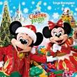 Tokyo Disneyland Christmas Fantasy 2014