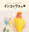 Bird Story�ҏW��