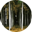 Parrallel Forest Ep