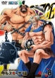 One Piece 17th Season Dressrosa Hen Piece.8