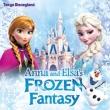 Tokyo Disneyland Anna And Elsa`s Frozen Fantasy