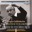 Symphonies Nos.4, 5 : Celibidache / Swedish Radio Symphony Orchestra (1970, 1968 Stereo)(2CD)