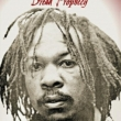 Dread Prophecy -The Strange And Wonderful Story Of Yabby You