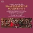 Brandenburg Concertos Nos.1-6 : Leonhardt, Bruggen, Kuijken, Bylsma, etc (2CD)