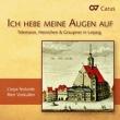 Telemann, Heinichen & Graupner In Leipzig: Voskuilen / L'arpa Festante