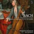 6 Cello Suites, Gamba Sonata, 1-3, : W.kuijken(Vc, Gamb)Piet Kuijken(Cemb)
