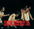 Hagiwara Kenichi `85 Andree Marlrau Live