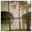 Clarinet Sonatas Nos.1, 2, Klavierstucke Op.118 : L.Coppola(Cl)Staier(Fp)