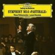 Symphony No.6 : Bernstein / Vienna Philharmonic (Single Layer)