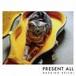 Present All