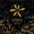 Vol.3: Flower [Special Edition] (CD+DVD+PHOTOBOOK)