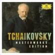 Masterworks : Mravinsky / Laningrad Po, Ozawa / Bso, Rostropovich, Ashkenazy, etc (27CD) / Tchaikovsky (1840-1893)