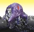 Vulnicura -Limited