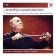 Comp.symphonies, Violin Concerto: Walter / Columbia So Francescatti(Vn)