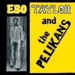 Ebo Taylor And The Palikans