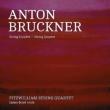 String Quintet, String Quartet, etc : Fitzwilliam String Quartet, James Boyd(Va)