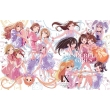 The Idolm@ster Cinderella Girls 9