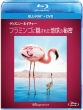 Disneynature: The Crimson Wing: Mystery Of Flamingos