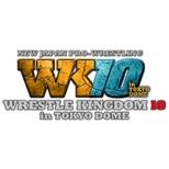 Wrestle Kingdom 10 2016.1.4 Tokyo Dome