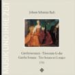 Gamba Sonata, 1, 2, 3, Etc: Harnoncourt(Gamb)Tachezi(Cemb)Stastny Bruggen(Fl)