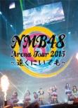 NMB48 Arena Tour 2015 �`�����ɂ��Ă��`