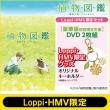 【Loppi・HMV限定】植物図鑑 運命の恋、ひろいました 豪華版(初回限定生産)[DVD]「オリジナルキーホルダー」付き