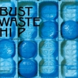BUST WASTE HIP (2枚組アナログレコード)【初回生産限定】