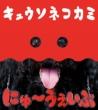 にゅ〜うぇいぶ 【初回限定盤】