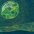 Superorganism [Deluxe Edition]