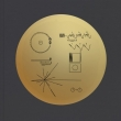 Voyager Golden Record (150g)