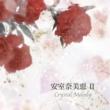 安室奈美恵作品集2