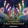 東京ディズニーランド(R)ナイトタイムスペクタキュラー「Celebrate! Tokyo Disneyland」