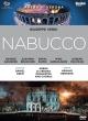 『ナブッコ』全曲 ベルナール演出、ダニエル・オーレン&アレーナ・ディ・ヴェローナ、ガグニーゼ、ブランキーニ、他(2017 ステレオ)(日本語字幕付)