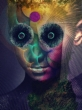 The Insulated World 【完全生産限定盤】(Blu-spec CD+CD+DVD)
