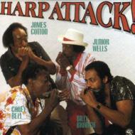 Harp Attack