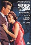 Movie/草原の輝き Splendor In Thegrass