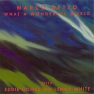 What A Wonderful World With Eddie Gomez And Lenny White