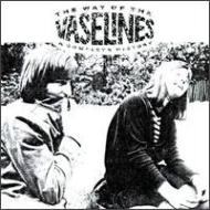 Way Of The Vaselines