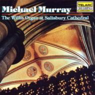 M.murray Salisbury Cathedral