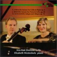 Cello Sonata.1 / .: Dinitzen(Vc)westenholz(P)+schumann
