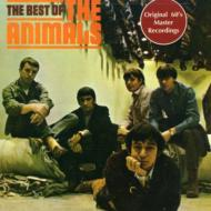 Best Of The Animals