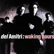 Waking Hours