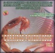 Corridos Ponzonosos Vol.2