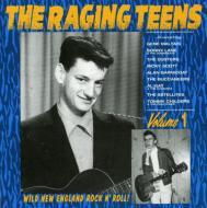 Raging Teens Vol.1