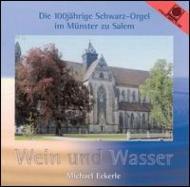 Michael Eckerle Organ Music