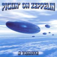 Pickin On Zeppelin -Tribute To Led Zeppelin